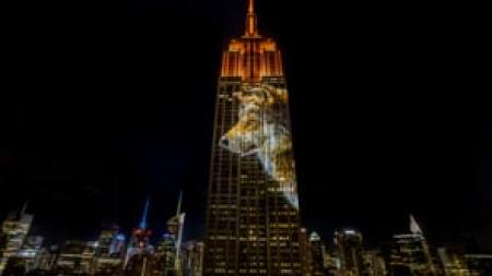 Projecting Change: Empire State Building